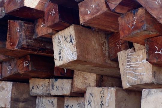 SPORC Kalbar gagalkan penyelundupan ratusan batang kayu asal Kapuas Hulu