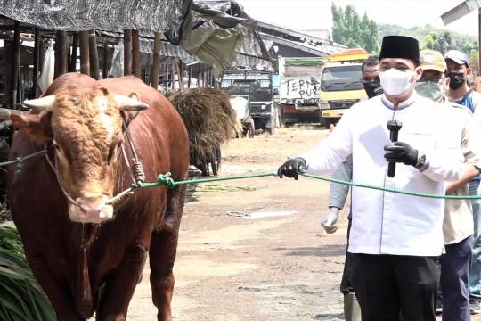 Wagub DKI apresiasi pemotongan hewan kurban di RPH