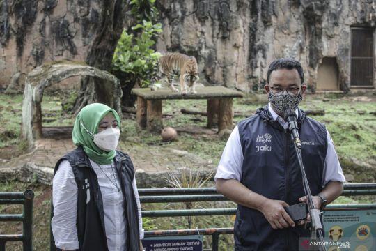 Pemkot Jakarta Selatan siap buka 15 ruang terbuka hijau