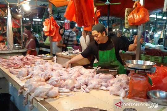 Harga daging ayam ras turun, Kalbar alami deflasi pada Juli