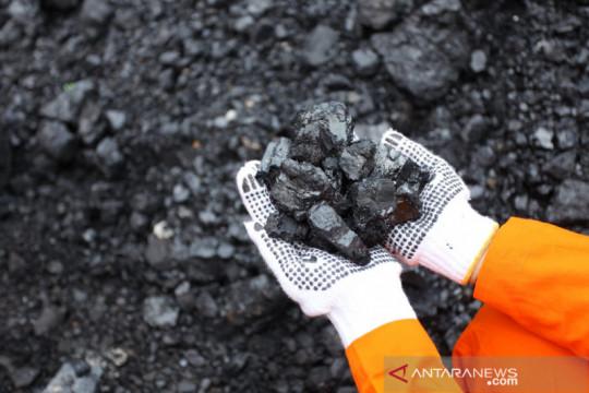 Pemerintah diminta persiapkan peta jalan transisi batu bara
