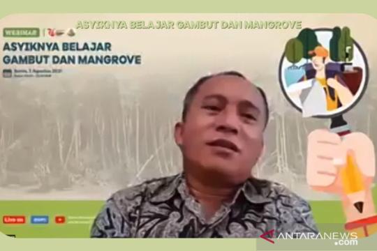 BRGM ubah target rehabilitasi mangrove untuk 2021