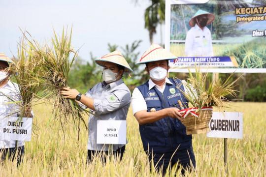 Sumatera Selatan ditargetkan jadi lumbung pangan nasional