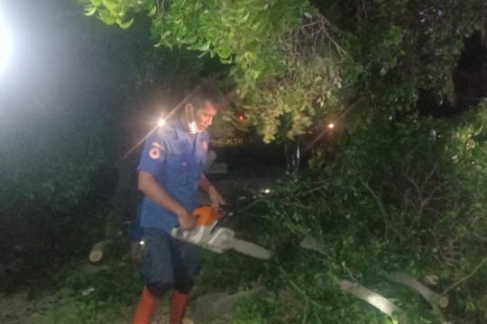 Lima rumah di Bandarlampung rusak diterjang puting beliung