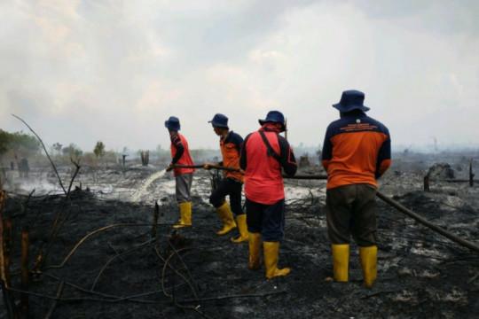KPH: Kebakaran lahan di Sambas akibat pembukaan lahan dengan membakar