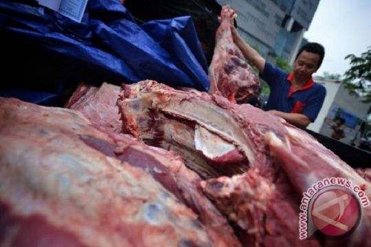 Dharma Jaya: Kerja sama sapi dengan NTT kurangi ketergantungan impor