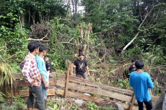 Petugas konservasi menghalau beruang madu dari kebun warga di Agam