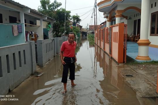 BPBD Lebak catat 1.239 rumah warga terendam banjir