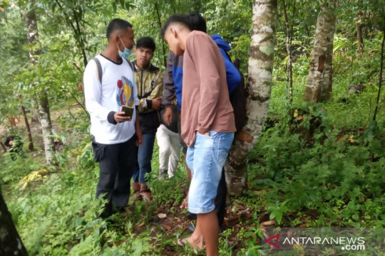 Warga Duo Koto Agam digegerkan jejak cakaran satwa liar diduga harimau