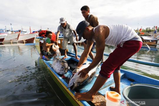 Memperkuat kolaborasi penangkapan ikan secara berkelanjutan