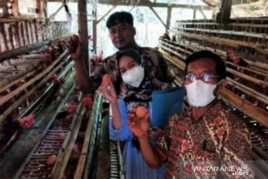 Kementan dorong pemuda jadi wirausaha pertanian