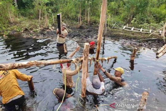 464 Pokmas restorasi gambut sudah terbentuk di Riau 2021