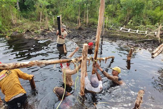 BRGM libatkan masyarakat dalam kegiatan restorasi gambut dan mangrove