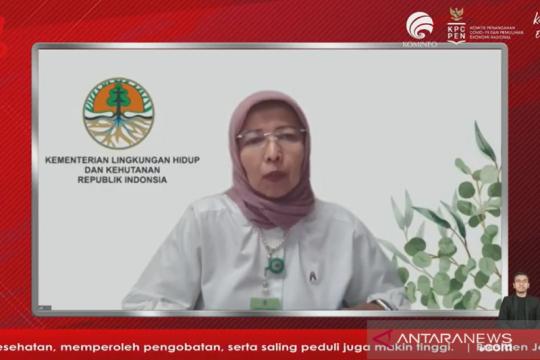 KLHK dorong pembangunan fasilitas pengolahan limbah medis di daerah