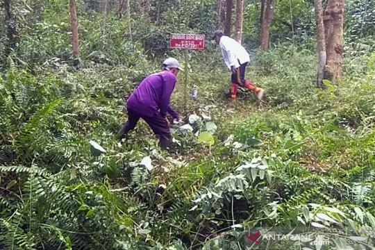 BRGM optimalkan sumur bor untuk pembasahan lahan gambut cegah karhutla