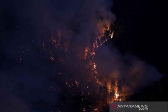 Api membakar lereng bukit di Grizzly Flats California