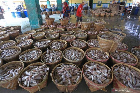 Anggota DPR: Benahi sistem rantai produksi perikanan hulu ke hilir