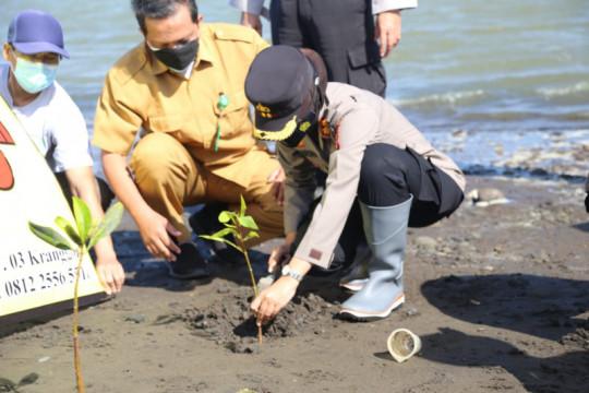 Polres Kulon Progo-DKP tanam 1.000 mangrove di Pantai Trisik