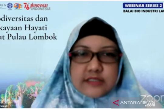 Peneliti LIPI: Perairan Lombok Barat kaya potensi teripang komersial