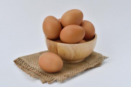 Usai pulih dari COVID-19 jangan lupa konsumsi makanan bergizi