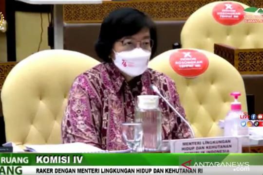 Menteri LHK pastikan terus dorong percepatan penetapan hutan adat