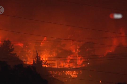 Kebakaran hutan lalap pembangkit listrik di Turki barat daya