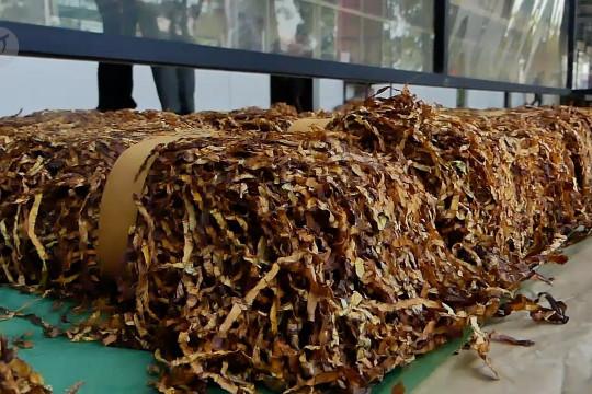Pantau harga, Bupati Temanggung tinjau gudang tembakau