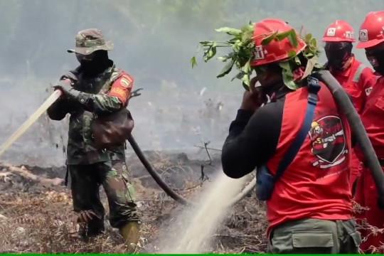 BNPB petakan daerah rawan karhutla di puncak kemarau