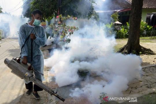 Tiga daerah di Jabar tertinggi kasus dengue nasional