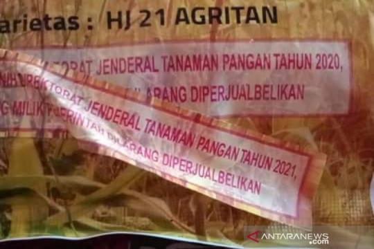 Benih jagung bantuan pemerintah di Bima diduga kedaluwarsa