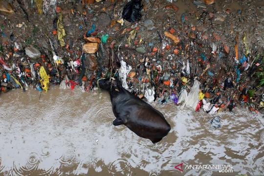 Sungai Bishnumati meluap setelah hujan deras di Kathmandu