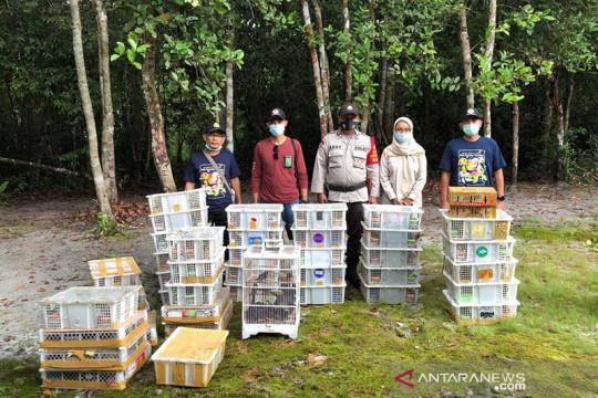 BKSDA Kalteng gagalkan pengiriman ilegal ribuan ekor burung