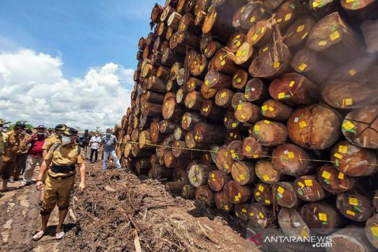 Penyegelan sementara ribuan kayu log di Palangkaraya