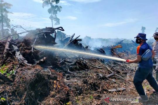Dua hektare lahan gambut terbakar di Nagan Raya