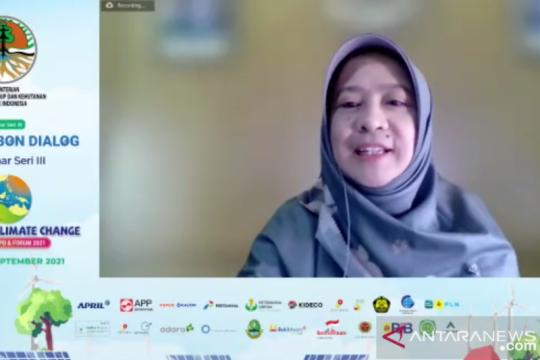KLHK: Konservasi penting di mitigasi perubahan iklim sektor kelautan