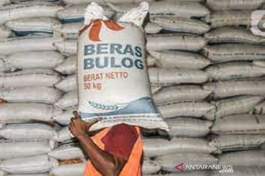 Peneliti: Peran Bulog dalam rantai pasok beras perlu dievaluasi