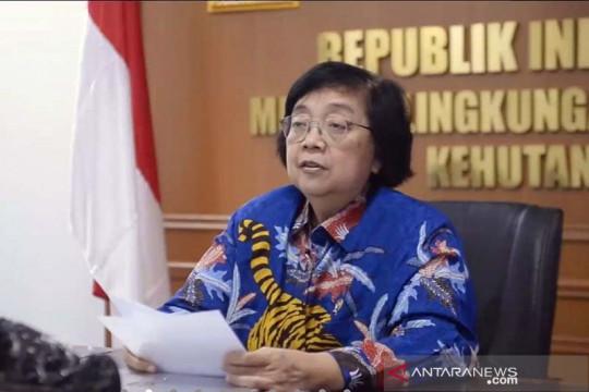 Menteri LHK: KIFC perlu diperkuat untuk fasilitasi program kehutanan