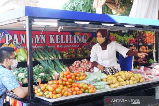 Pekarangan pangan-lumbung pangan masyarakat jadi upaya tekan stunting