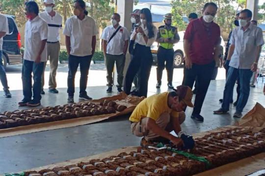 Wamendes PDTT pantau pembelian tembakau petani oleh pabrik rokok
