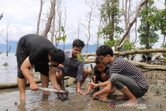 Mahasiswa UAI Jakarta tanam 1.000 pohon mangrove di Donggala Sulteng
