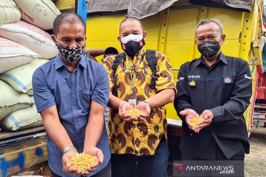 Presiden kirimkan bantuan jagung untuk Suroto, peternak ayam Blitar