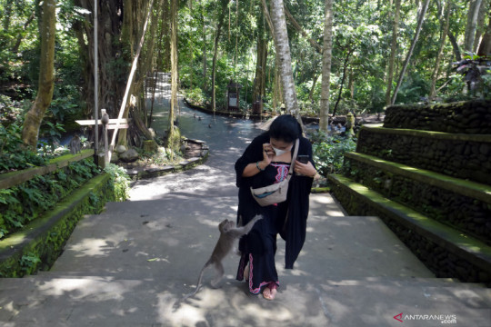 Wagub harapkan Dubes RI di ASEAN turut promosikan pariwisata Bali
