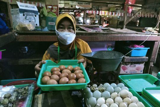 Sejak awal September harga telur ayam negeri di kawasan Jakbar anjlok