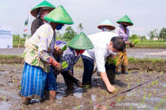 Menko Airlangga dukung smart farming petani milenial