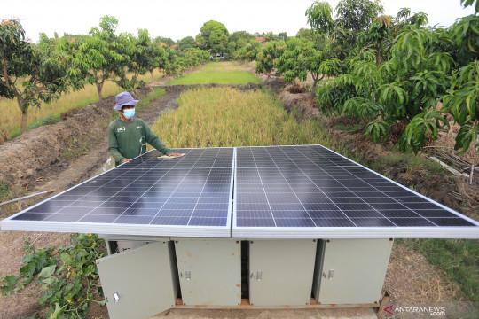 Petani manfaatkan listrik tenaga surya
