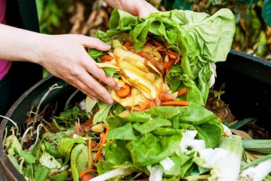 """Penelitian ungkap penyebab """"Food waste"""" di Indonesia tinggi"""