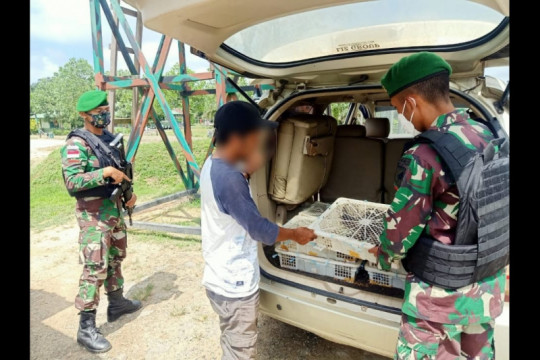 Satgas Pamtas 643/Wns gagalkan penyelundupan ratusan satwa