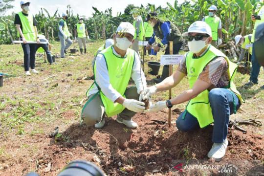 Pemkab Bogor bangun hutan kota di Pondok Rajeg