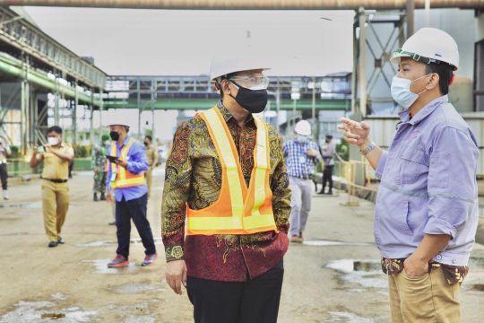 Banyak keuntungan, DEN dorong pembangunan smelter nikel di Indonesia