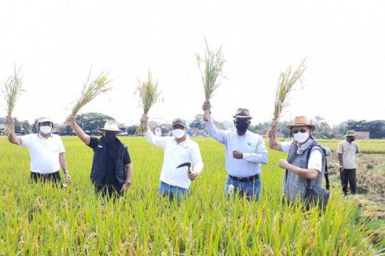 Intani harapkan Jawa Barat jadi lumbung pangan nasional